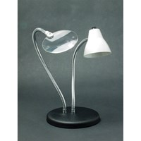 Picture of 2-Arm Combination Table Lamp and 2x Magnifier