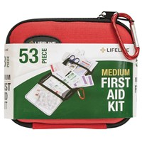 53-Piece Medium First Aid Kit with Hard Case