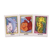 Go Fish Flash Cards - Braille